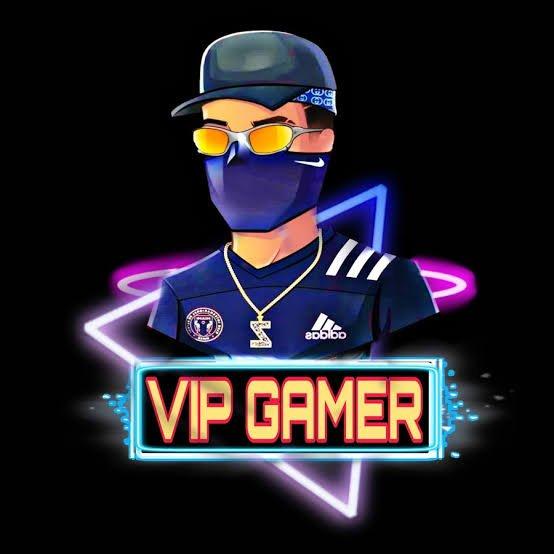 Vip Gamer